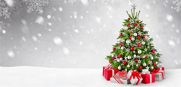 echt jetzt ein weihnachtsbaum aus plastik. Black Bedroom Furniture Sets. Home Design Ideas