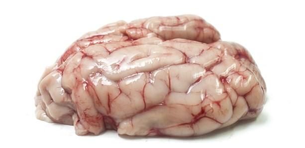 Schweinehirn